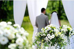 weddingoptimized